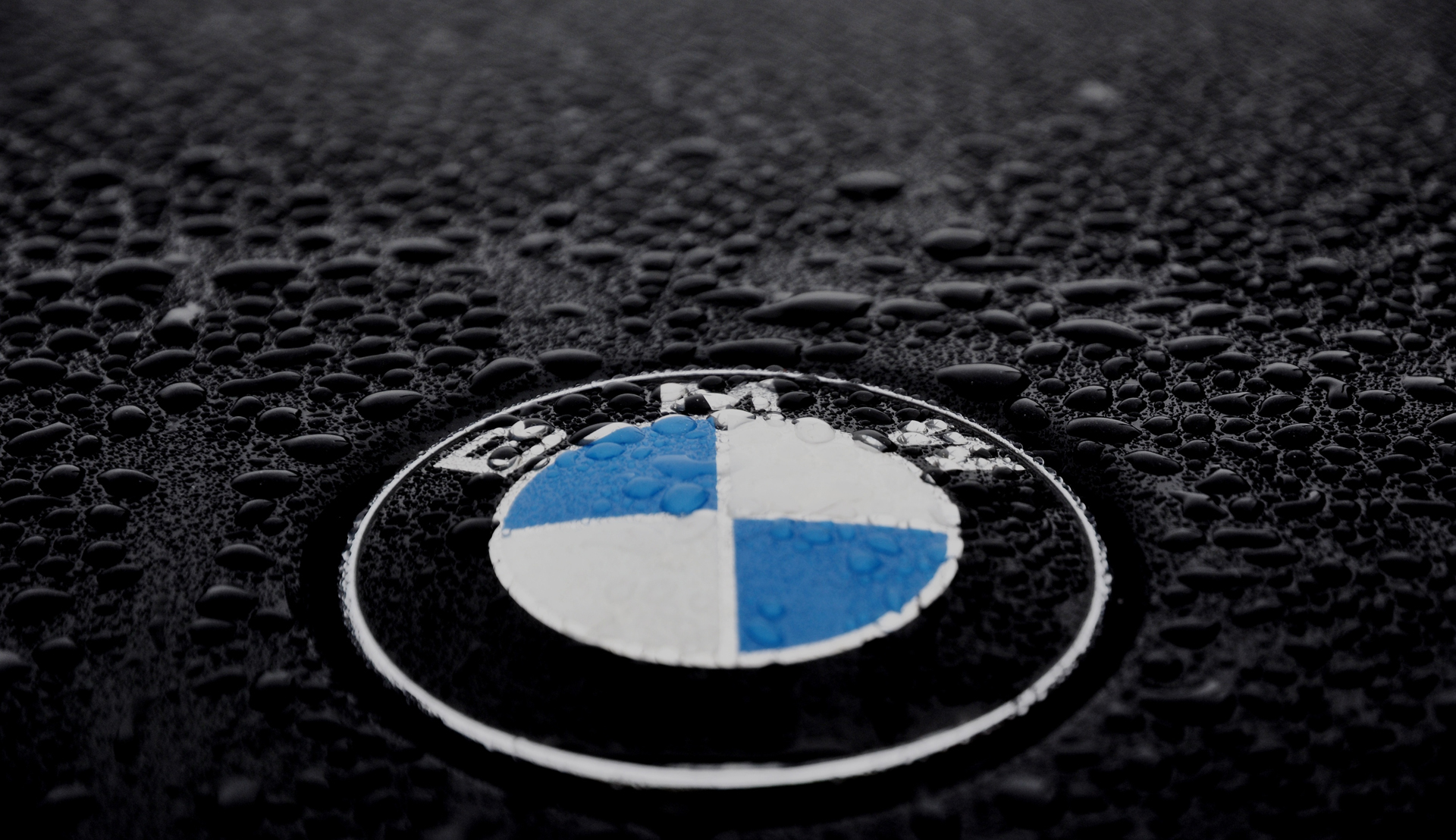 bmw logo desktop background 366