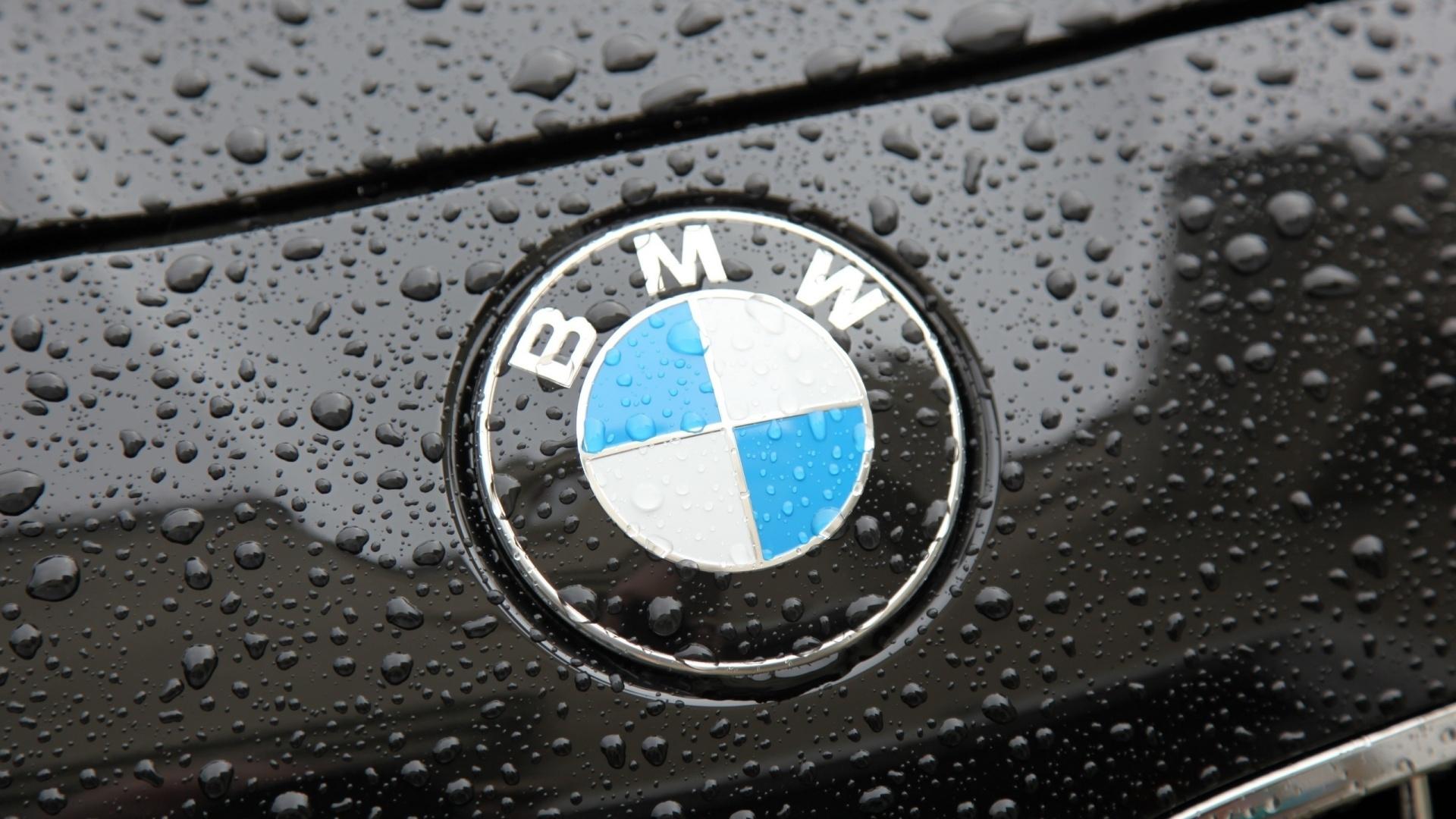 bmw logo widescreen wallpaper 369