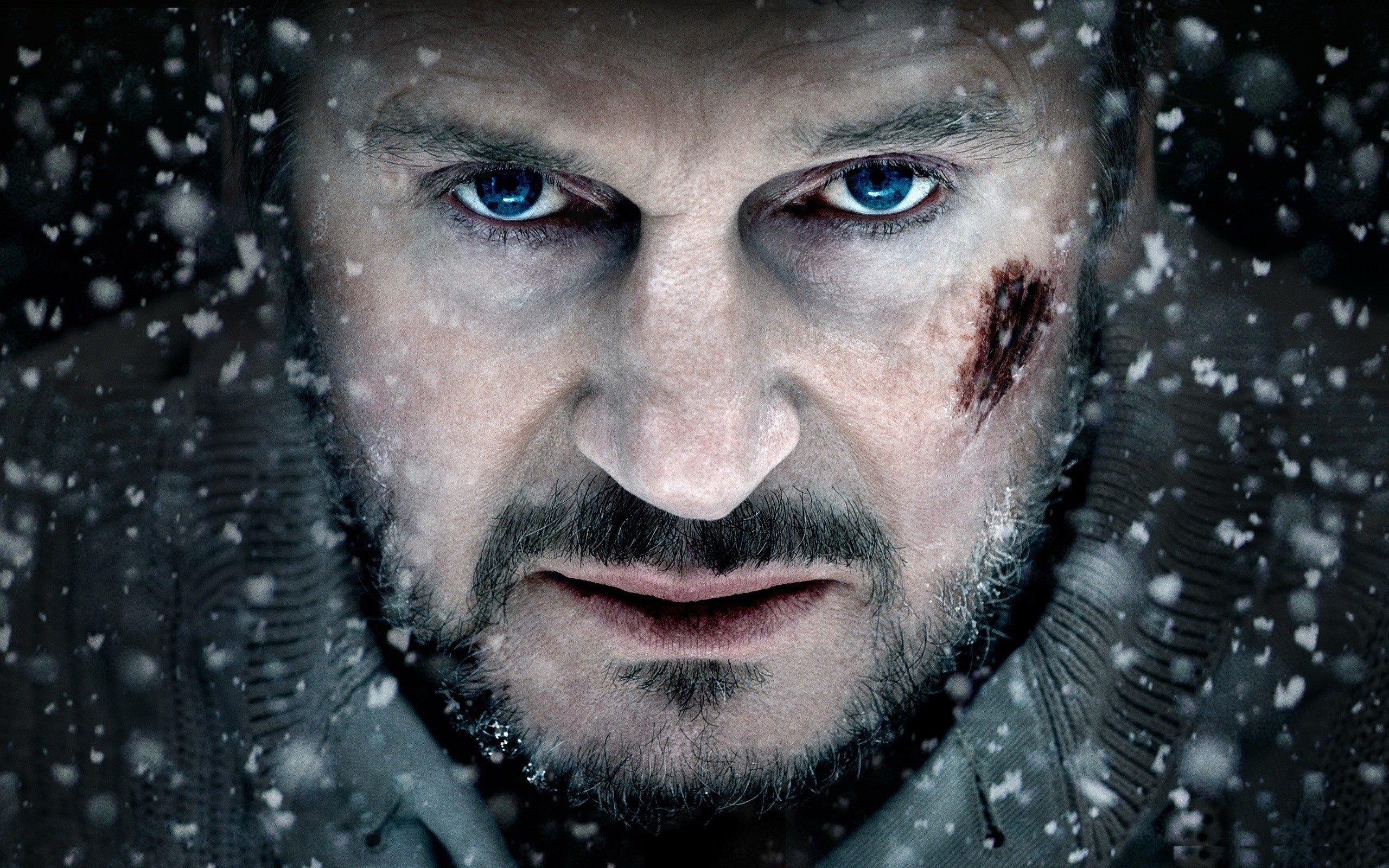 liam neeson the grey desktop wallpaper 681