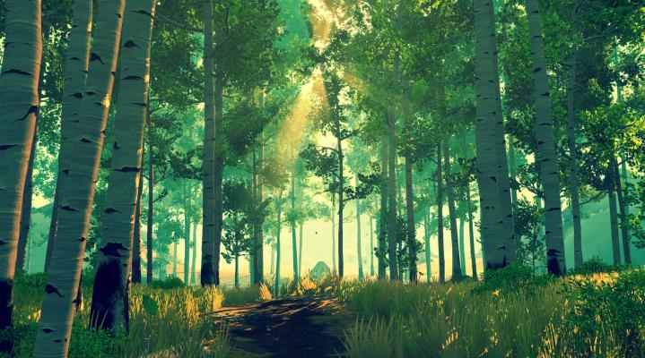 Firewatch Forest Desktop Wallpaper 414