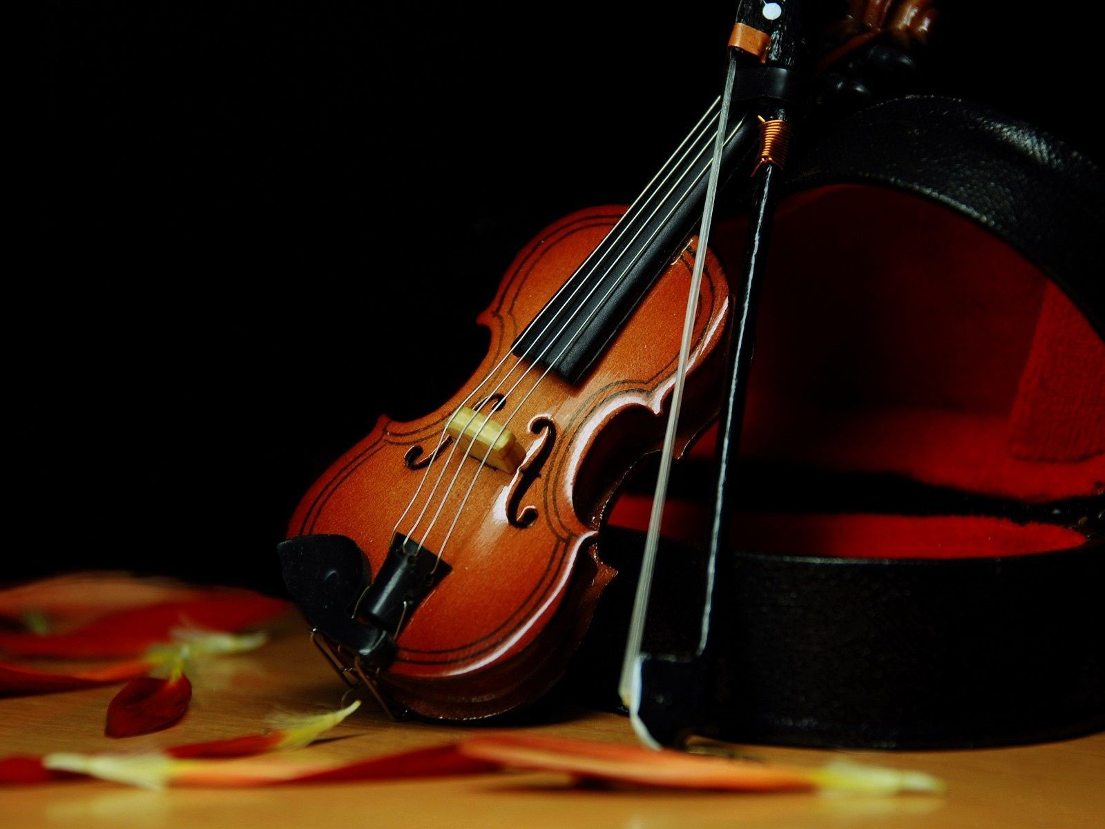 violin computer wallpaper 389