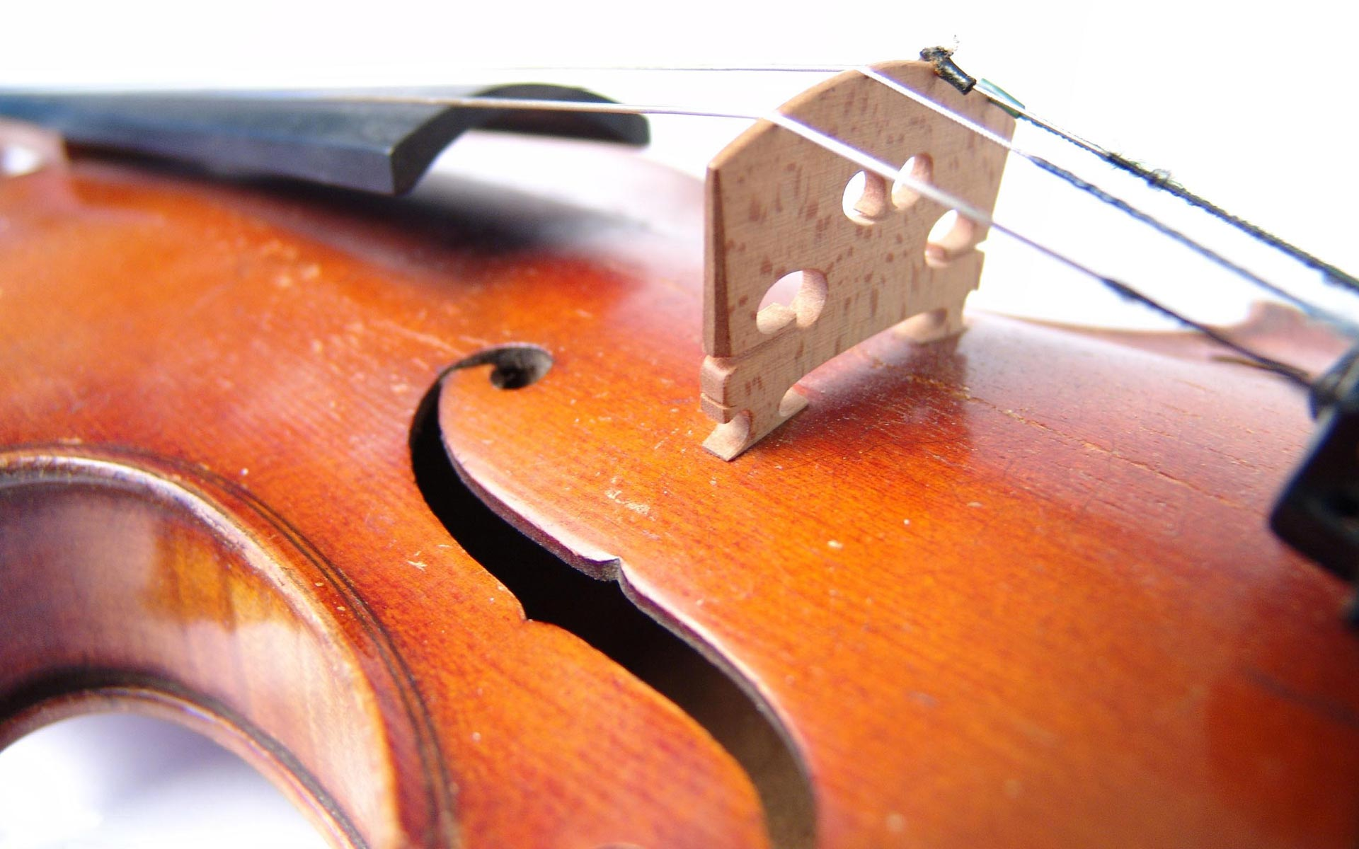 violin up close instrument wallpaper 391