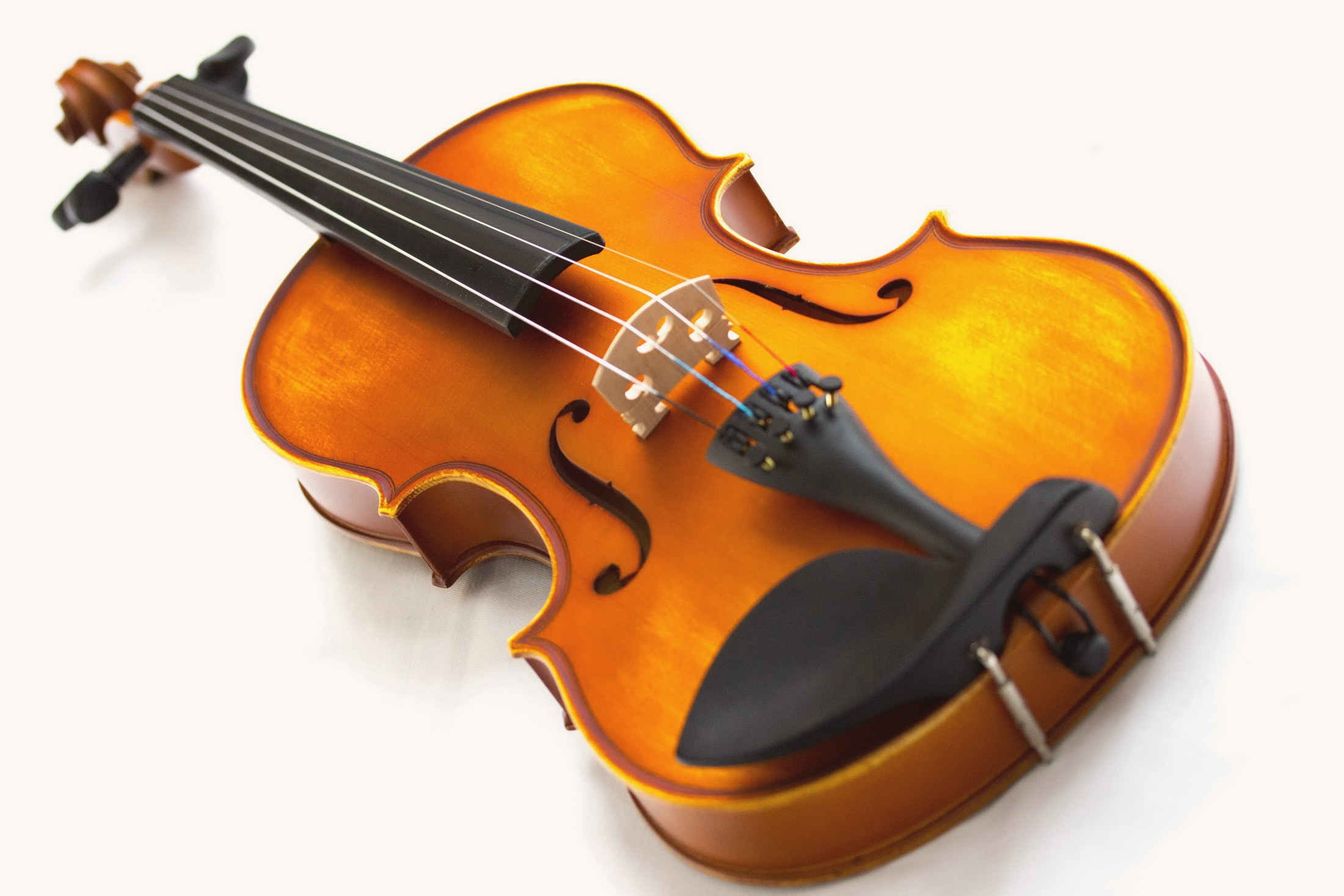 violin wallpaper 385