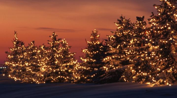 Christmas HD Wallpaper 1973